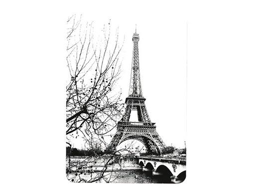 Carte postale La belle de Paris (photo)