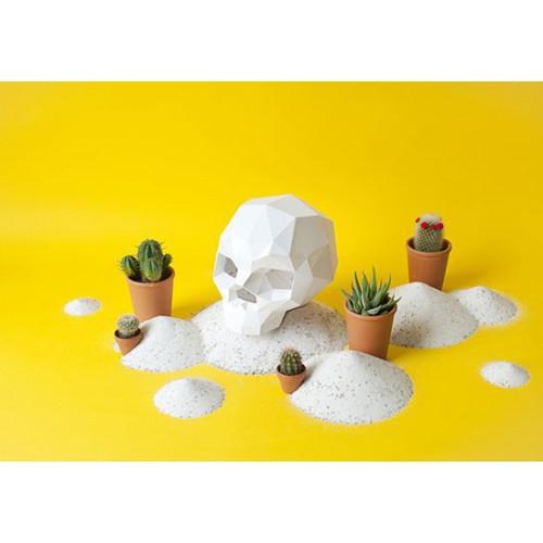 Paper Skull Sapiens blanc