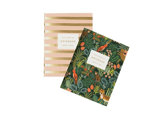 Set de 2 carnets Jungle