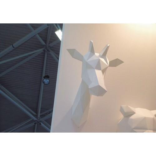 Trophée girafe blanche