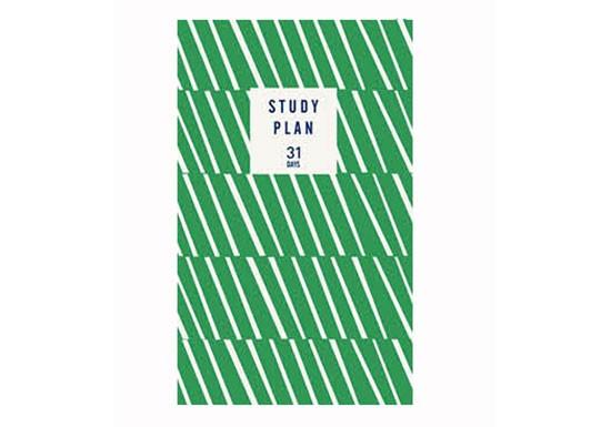 Study Plan - vert à rayures