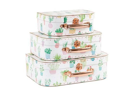 Set de 3 valisettes cactus
