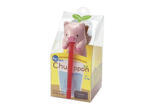 Chuppon Cochon - trèfle
