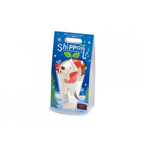 Shippon chien de Noël