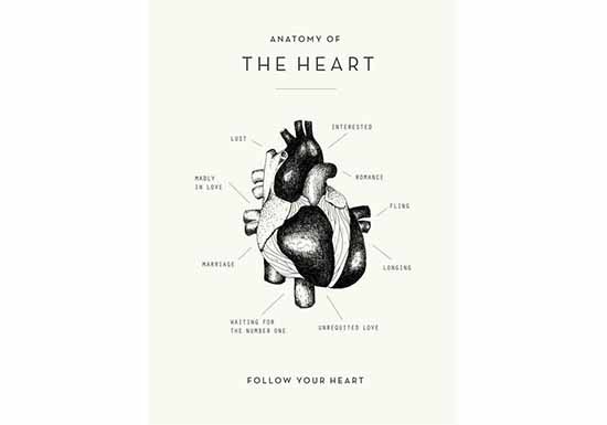 Poster Heart Anatomy