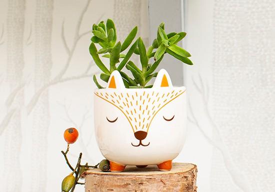 Mini cache pot Fox