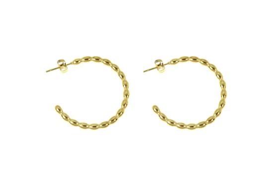 Boucles d'oreilles Salomé - acier