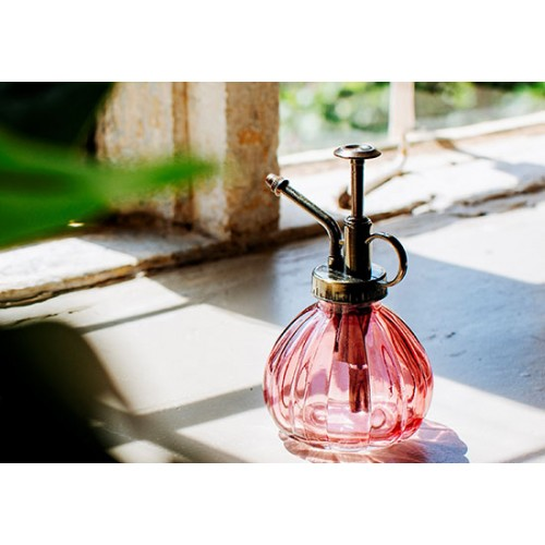 Vaporisateur pour plante rose